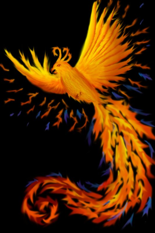 phoenix rising from a (not yet drawn) cremation urn