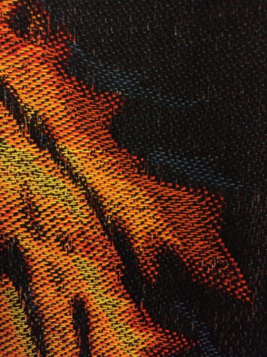 close-up of the phoenix's tail