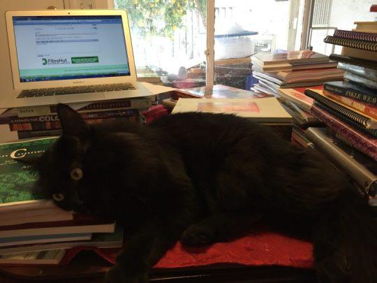 Fritz helping me sort books