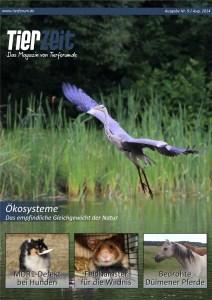 Cover Ausgabe 9 bunt