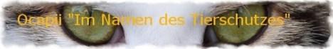 ocapii-Banner