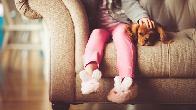 kind-hund-anschaffung
