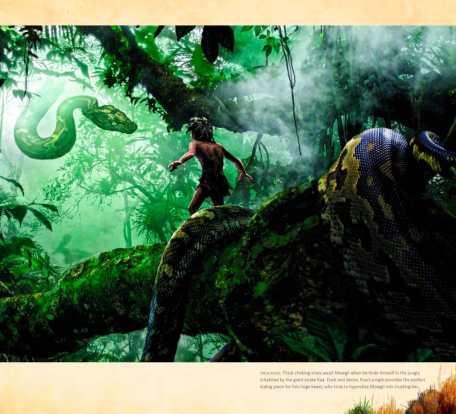 Le-livre-de-la-jungle-tierr.fr-15