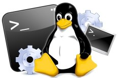 Consola Linux