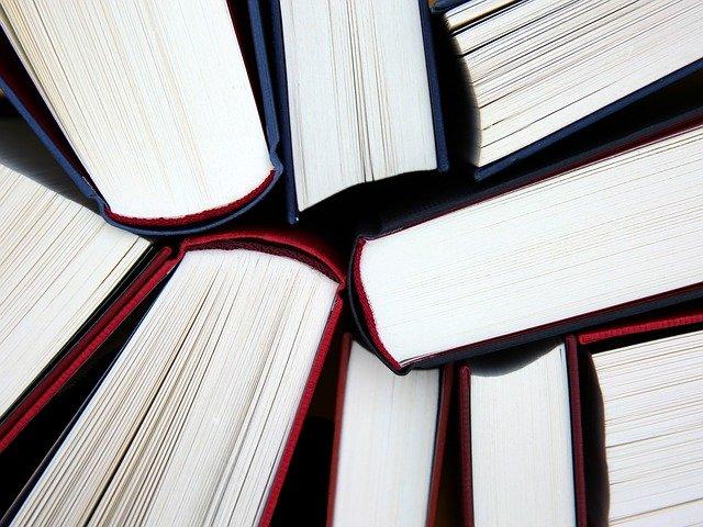 Blog educación Colegio Tierra del Sur