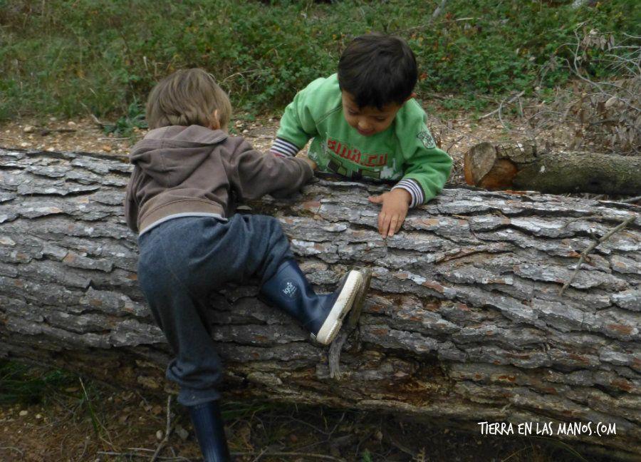 beneficios naturaleza - superar retos