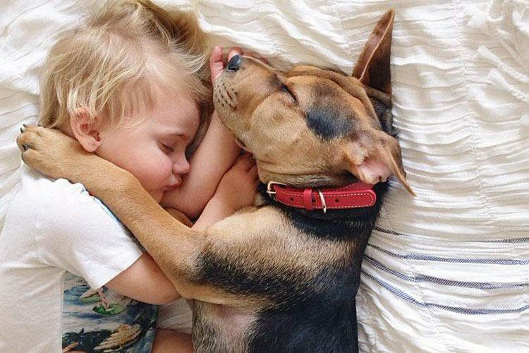 Beau y su perrito Theo