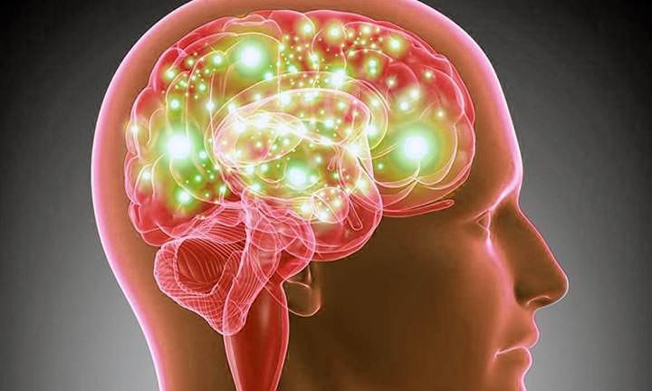 La madurez del cerebro llega recién a los 36 años