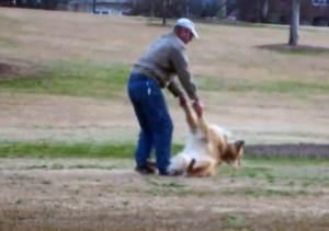 Perro obstinado se niega a abandonar el parque