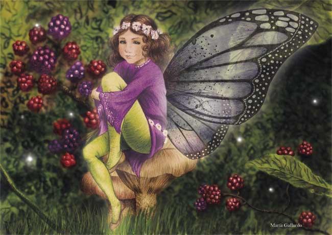 Mundos de fantasía, por María Gallardo