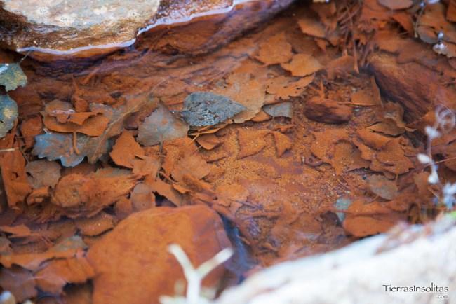 agua ferrosa mina de llorts
