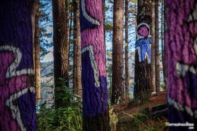 figuras en el bosque encantado de oma