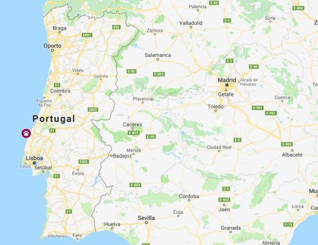 mapa playas perros portugal