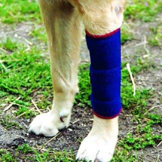 Bandagen für Hunde