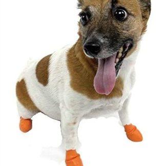 Pawz Hundeschuh bei Tierschuh.at