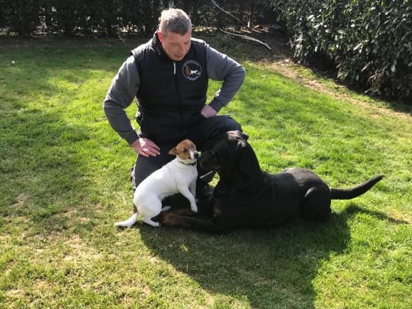 Jack Russel Terrier Dorie