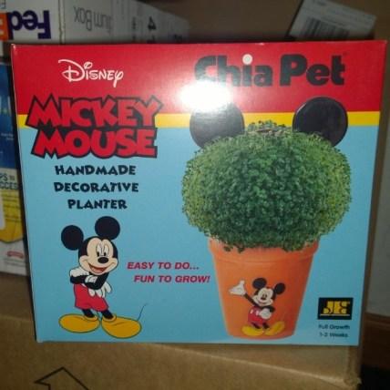 Disney Chia