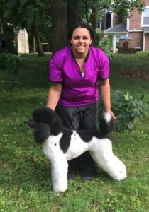 Tiffany, owner of Tiffany's Pet Spot is an award-winning competitive dog groomer!