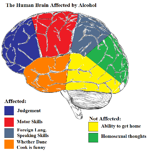 Study shows drinking improves foreign language skills test takers alcohol affects the confidence area of the brain a researcher said pointing to a complicated chart see below while some areas are affected by ccuart Choice Image