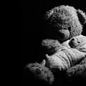 maman-our-et-bebe-ours