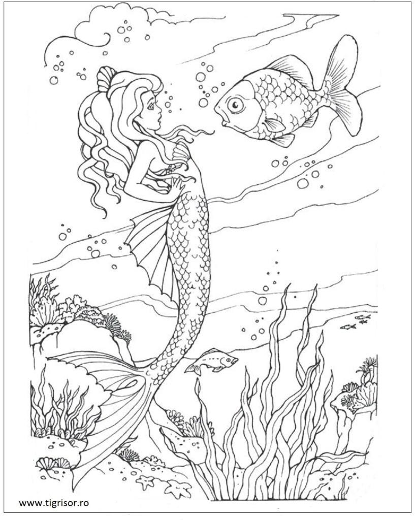 Moni Author At Tigrisorro Page 2 Of 56