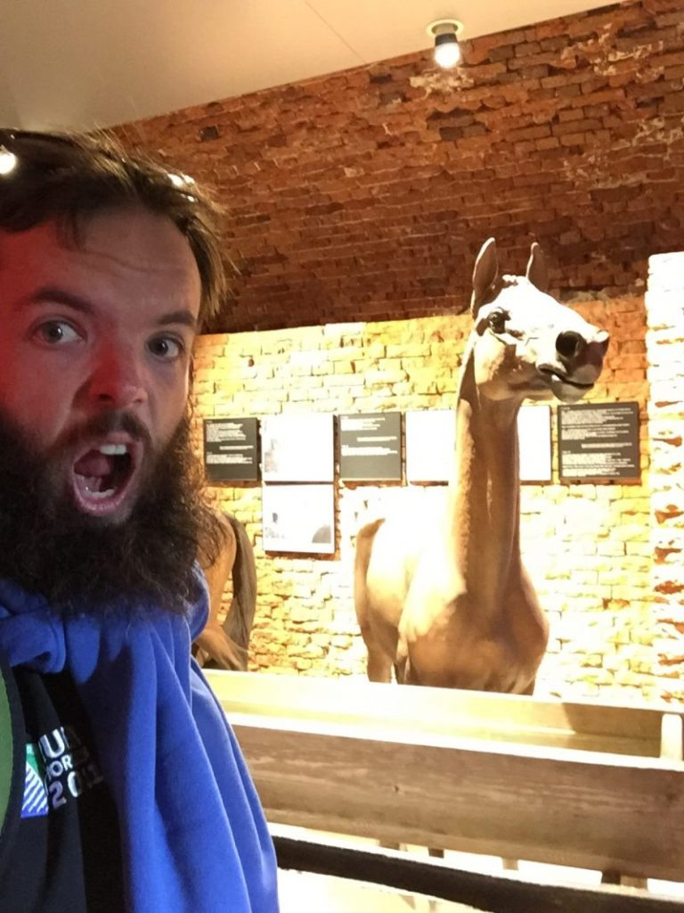 Horsing around in the museum