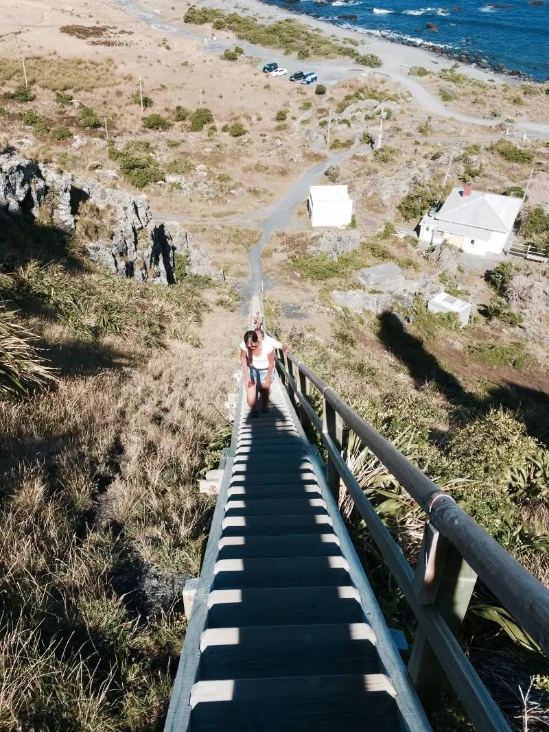 cape palliser stairs