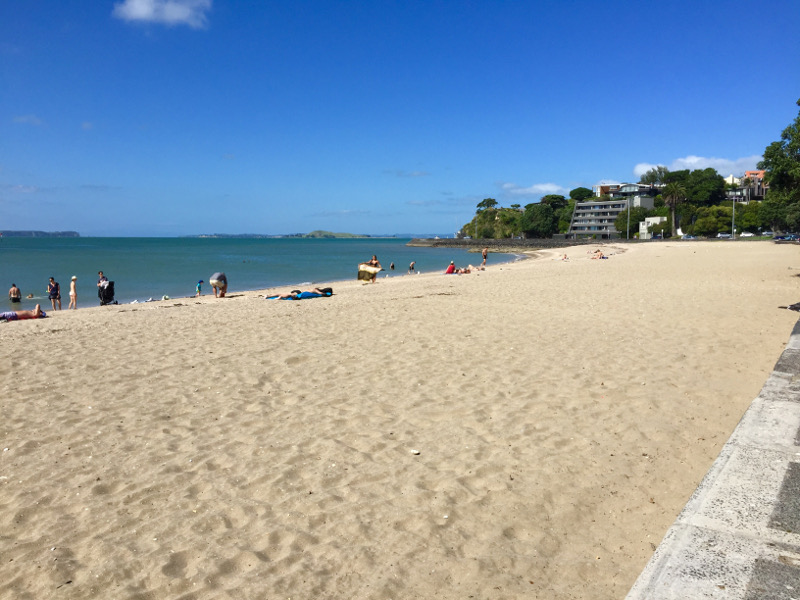 mission bay auckland