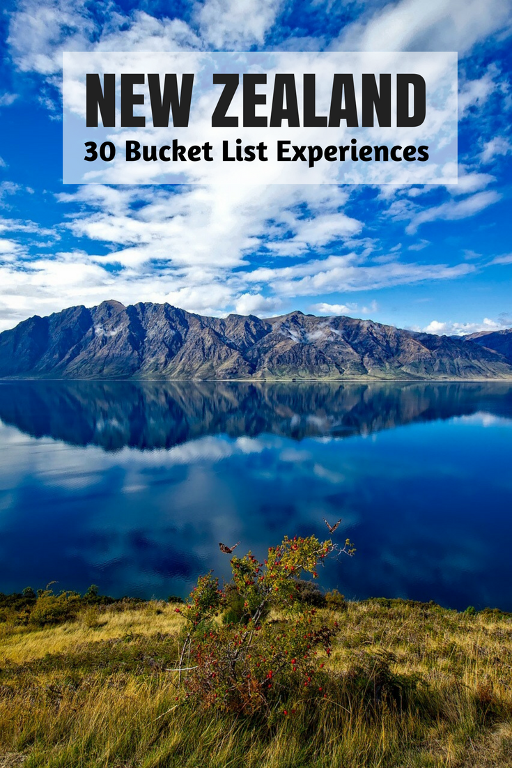bucket list for NZ