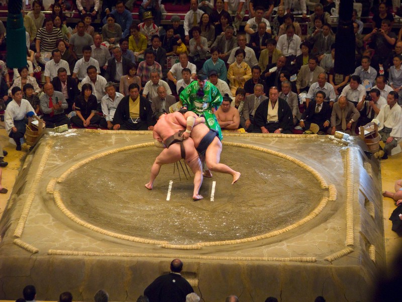 sumo life