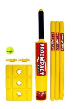beach cricket gift