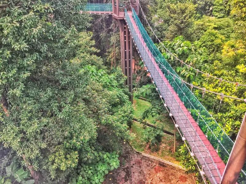 eco park canpy walk kl