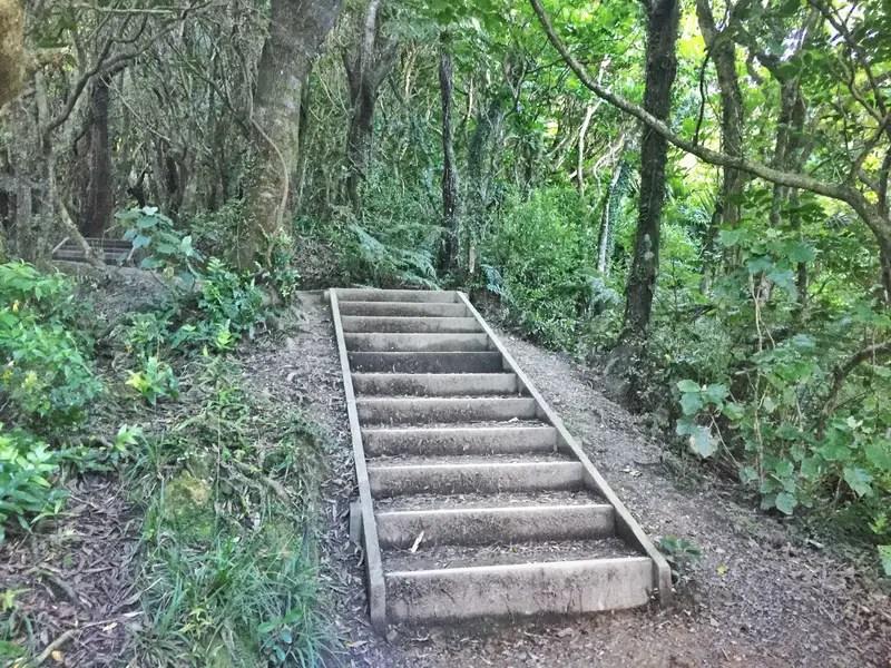 mount kaukau stairs
