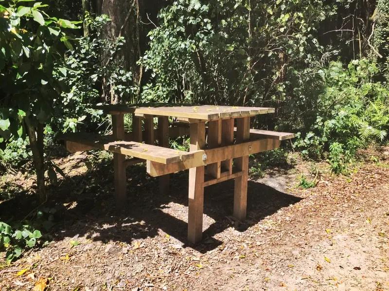 manawatu gorge picnic table