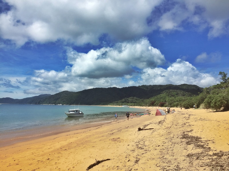 Abel Tasman and Golden Bay in One Day review