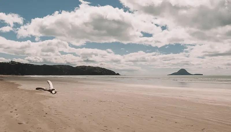 ohope beach views