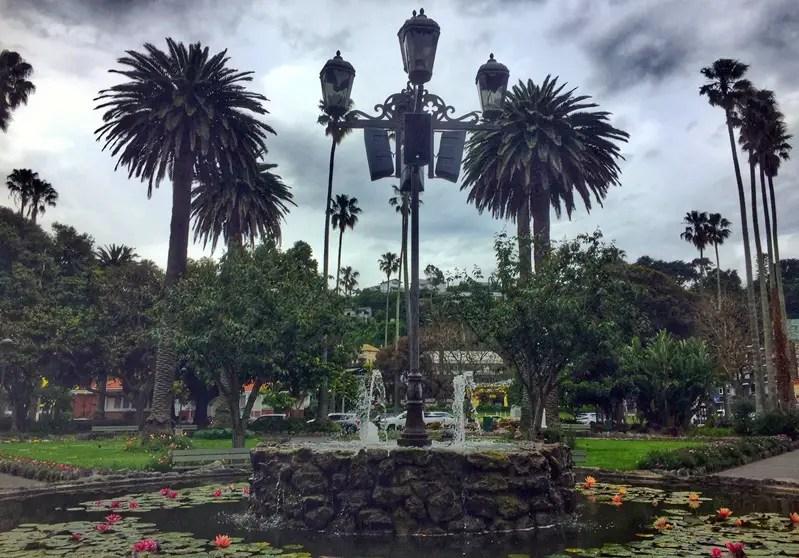 napier garden