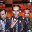 Jurus Sovereign Wealth Fund Jokowi