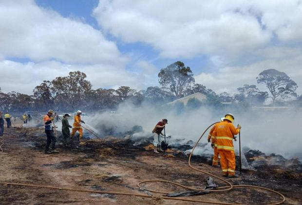 Setelah 240 Hari, Australia Bebas dari Kebakaran