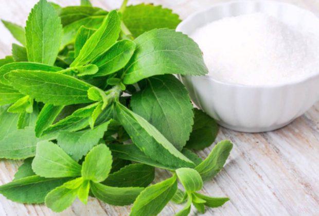 Stevia, Alternatif Gula Lebih Sehat tapi Tak Boleh Dikonsumsi Sembarangan