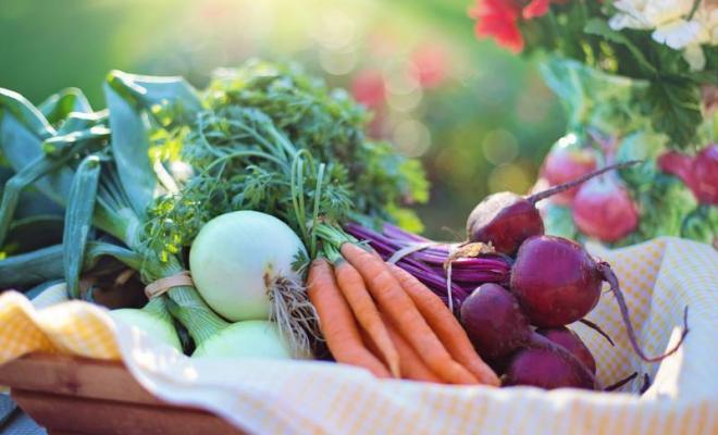 Tren Makanan Organik, Benarkah Lebih Sehat?