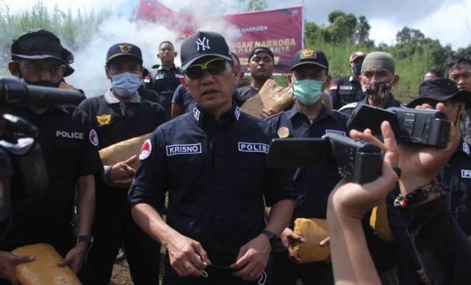 Bareskrim Polri Musnahkan 5 Hektare Ladang Ganja di Sumut