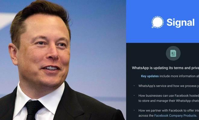 Elon Musk Rekomendasikan Signal, Pengganti WhatsApp