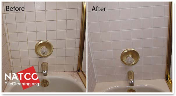 Image Result For Best Way To Remove Soap Sfrom Shower Walls