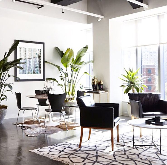 leggy furniture