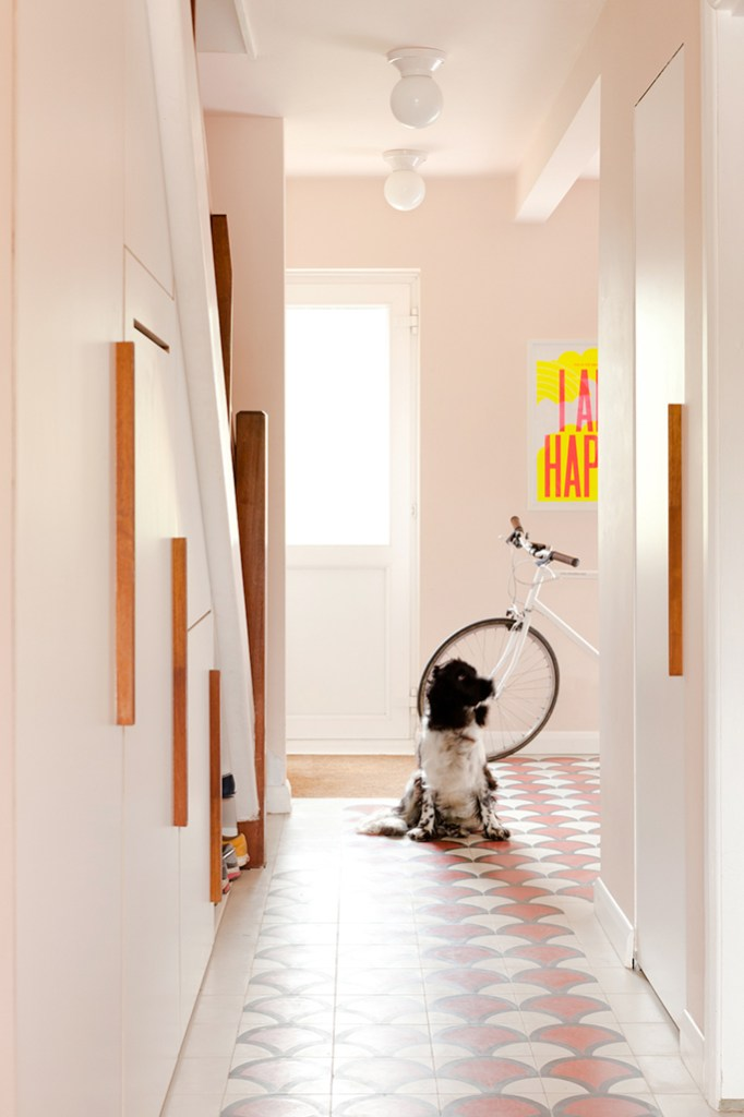dog in pink hallway with tiled floors