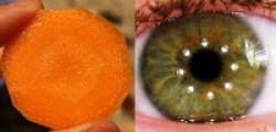 slice carrot eye