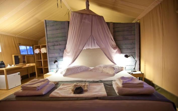 camping-thumb-large