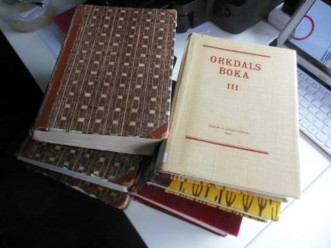 Denne gangen lånte jeg bygdebøker fra Meldal og Ordal