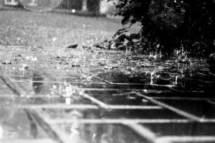 From_rain_and_tears_by_ArmoniaSilenziosa